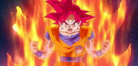 Bild zu:  Dragon Ball Super