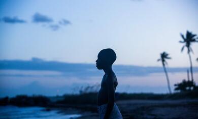 Moonlight mit Alex R. Hibbert - Bild 12