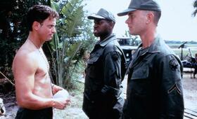 Forrest Gump mit Tom Hanks, Gary Sinise und Mykelti Williamson - Bild 2