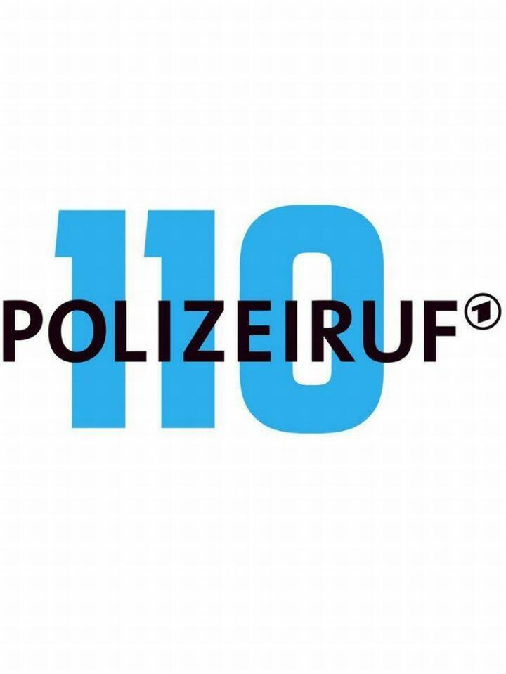 Polizeiruf 110: Der Fremde