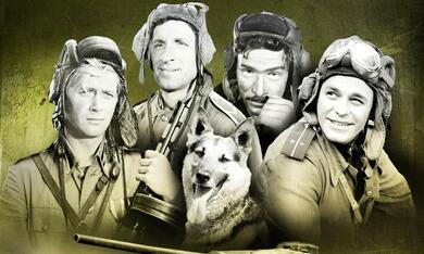 Vier Panzersoldaten Und Ein Hund Besetzung