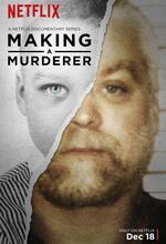 Making a Murderer Poster
