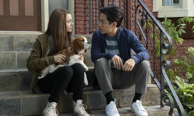 Bailey - Ein Hund kehrt zurück mit Kathryn Prescott und Henry Lau - Bild 7