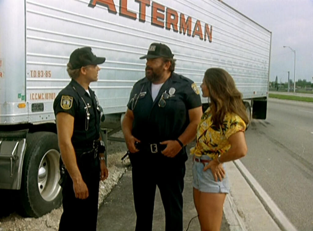 Die Miami Cops Besetzung