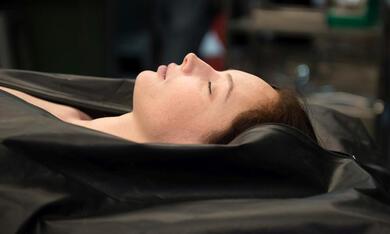 The Autopsy of Jane Doe mit Olwen Catherine Kelly - Bild 12