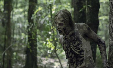 The Walking Dead - Staffel 10 - Bild 6