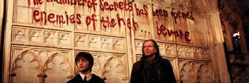 Harry Potter und die Kammer des Schreckens: Opfer-Warnung