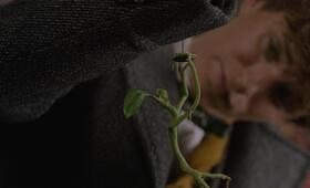 Phantastische Tierwesen: Grindelwalds Verbrechen mit Eddie Redmayne - Bild 27