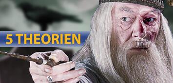 Bild zu:  5 Theorien zur Harry Potter Saga