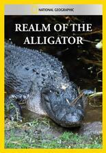 Im Reich des Alligators