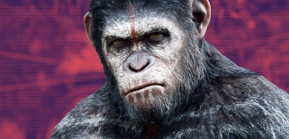 Planet Der Affen Neuer Film