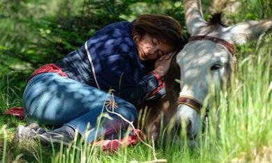 Mein Liebhaber, der Esel & Ich mit Laure Calamy - Bild 1