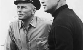 Kennwort: Morituri mit Marlon Brando - Bild 28