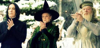 Wer sollte die Lehrer in Harry Potter ursprünglich spielen?