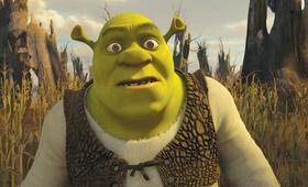 Für immer Shrek - Bild 4