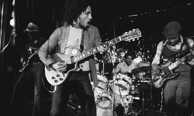 Marley - Bild 4