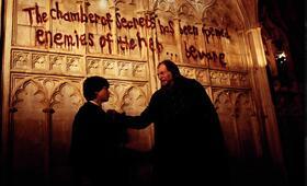 Harry Potter und die Kammer des Schreckens mit Daniel Radcliffe und David Bradley - Bild 6