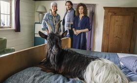 Zimmer mit Stall - Tierisch gute Ferien mit Alexander Beyer, Aglaia Szyszkowitz und Regula Grauwiller - Bild 3