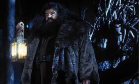Harry Potter und der Stein der Weisen mit Robbie Coltrane - Bild 6