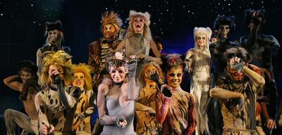 Eine Cats-Aufführung in Warschau