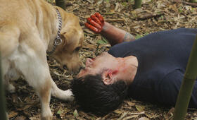 Lost Staffel 6 mit Matthew Fox - Bild 8