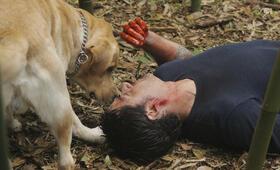 Lost Staffel 6 mit Matthew Fox - Bild 8