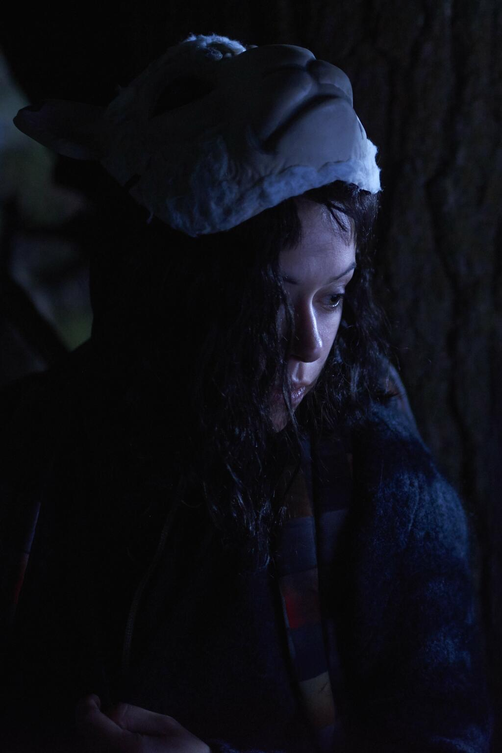 Orphan Black Staffel 4 Netflix