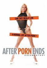 After Porn Ends