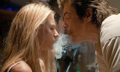 Savages mit Benicio del Toro und Blake Lively - Bild 8