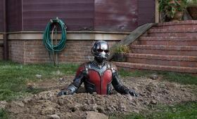 Ant-Man mit Paul Rudd - Bild 62