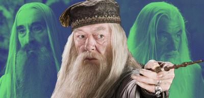 Harry Potter und der Gefangene von Askaban: Dumbledore-Alternativen