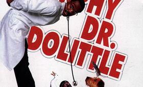 Dr. Dolittle - Bild 21