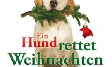 Ein Hund rettet Weihnachten - Bild 1