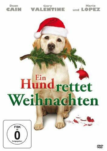 Ein Hund rettet Weihnachten - Bild 1 von 2