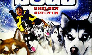 Snowdogs - Acht Helden auf vier Pfoten - Bild 1