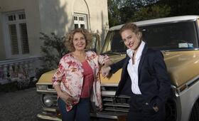 Katie Fforde: Meine verrückte Familie mit Michaela May und Wanda Perdelwitz - Bild 23