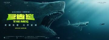 Die Größenverhältnisse in Meg