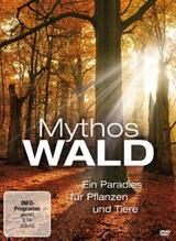 Mythos Wald - Poster