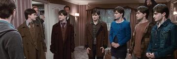 Harry Potter 7 und der Vielsafttrank