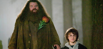 Jahre nach Phantastische Tierwesen: Hagrid & Harry Potter in Teil 4