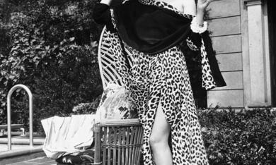 Sunset Boulevard - Boulevard der Dämmerung mit Gloria Swanson - Bild 7