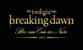 Breaking Dawn - Bis(s) zum Ende der Nacht - Teil 2 - Bild 43