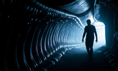 Alien: Covenant - Bild 8