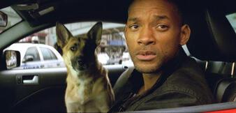 Ein Typ mit Hund: Fertig ist das Bühnenstück I Am Legend