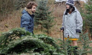 Weihnachten für Einsteiger - Bild 8