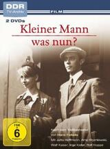 Kleiner Mann - was nun? - Poster