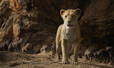 Der König der Löwen - Bild 5