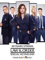 Law & Order: New York - Staffel 20 - Poster