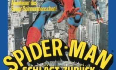 Spider-Man schlägt zurück - Bild 1