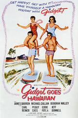 April entdeckt Hawaii - Poster